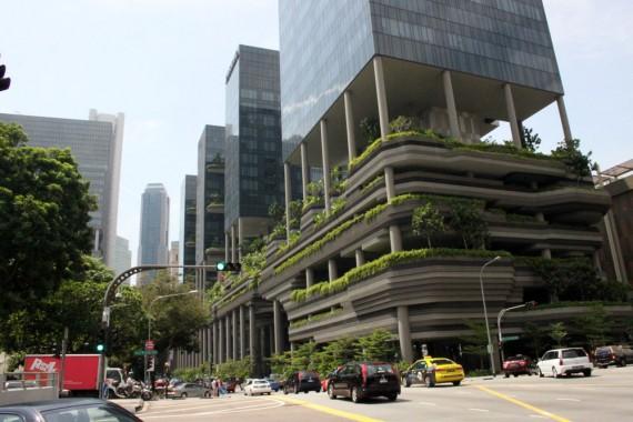 singapore-verde